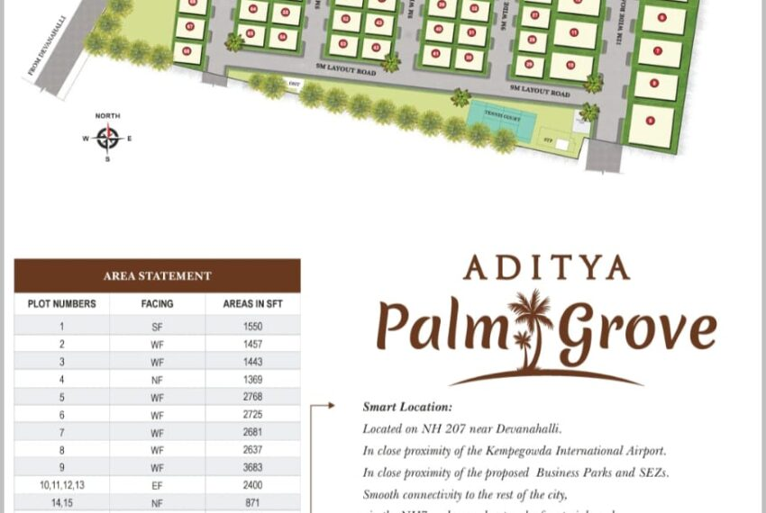 Aditya palm
